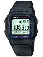 Спортивные часы Casio Sport W-800H-1A