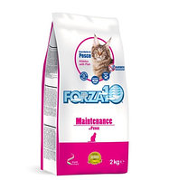 Сухой корм для взрослых кошек Forza10 Maintenance Pesce