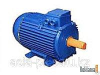 Электродвигатель 0.75кВт*1000 об/мин. 1081(лапы)