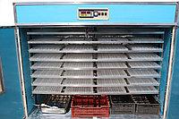 Инкубатор Промышленный на 1024 гусиных яиц