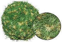 Еловый шар d0,25м зеленый K25___