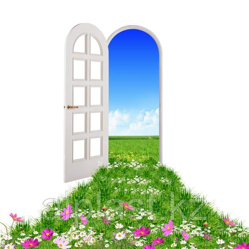 Двери металлопластиковые с декоративной раскладкой (пластиковые, ПВХ окна)