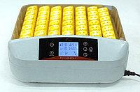 Цифровой инкубатор с терморегулятором на 56 яиц, фото 1