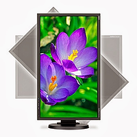 NEC 24'' E243WMi monitor,Black(250cd/m2,1000:1,6ms,1920x1080,178/178,Hight adj:110,Swiv,Tilt,Pivot;DVI-D,D-sub,Displ.Port; Internal PS;2*1W