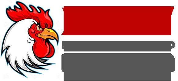 Символ года 2017