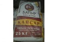 Гипсовая шпатлевка 2в1 КАЙСАР в Алматы
