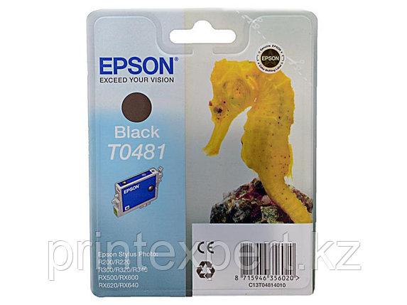 Картридж Epson C13T04814010 R200/R300/RX500/RX600 черный, фото 2