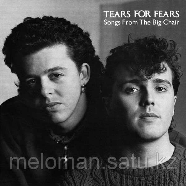 Tears For Fears Songs From The Big Chair LP (б/у) 832701 - МЕЛОМАН в Алматы