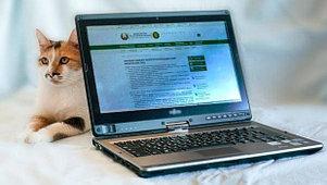 Настройка электронных счетов-фактур (ЭСФ), фото 2