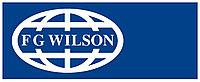 Топливный фильтр FG WIlson 10000-00339