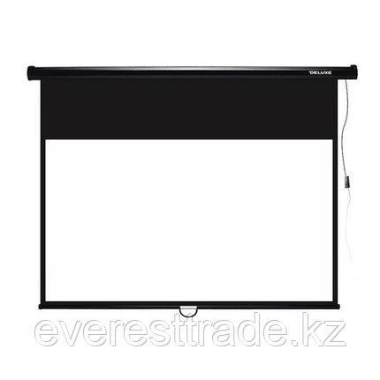 Экран для проекторов Deluxe DLS-M274-210, настенный, фото 2