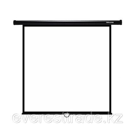 Экран для проекторов Deluxe DLS-M274x,настенный, фото 2