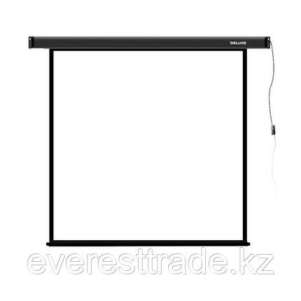 Экран для проекторов, Deluxe, DLS-E274x210, Моторизированный, фото 2