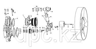Шпонка ролика натяжного Weichai WD615 Евро-3  VG1560060071