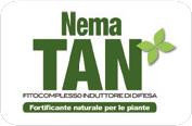 Nema-TAN (NTS Group Trading Ltd)