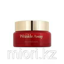 Wrinkle Away Fermented Cream [The Skin House]
