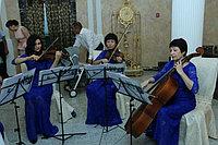 Струнный квартет, выездная регистрация брака в Павлодаре, фото 1