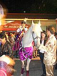 Карета Лошадь Пони Верблюд Лама Сани Фаэтон в Алматы, фото 9