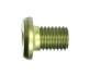 Винт заглушка на винт для головки (кат. GM01.06)