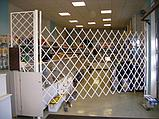 Решетки - ширмы, фото 2