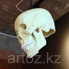 Люстра Voodoo lamp hanging, фото 3