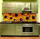 Кухни с фотопечатью на фартуке, фото 3
