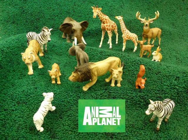 Animal Planet by Mojo