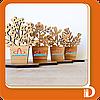 Корпоративные наборы бизнес-сувениров и подарков