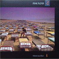 Pink Floyd A Momentary Lapse Of Reason (Remastered) LP 916819