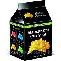 Научные игры мини: Выращиваем кристалы(желтые)