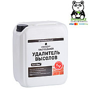 Удалитель высолов концентрат 1:2, 021-5 SALT CLEANER(САЛТ КЛИНЕР) -  5 л.=50м2