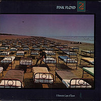 Pink Floyd A Momentary Lapse Of Reason LP (VG б/у) 956125