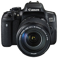 Зеркальный фотоаппарат Canon EOS 750D Kit 18-135 IS STM