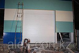 TLP-VL Промышленные,секционные ворота, фото 3