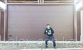 Гаражные ворота ЦЕНА/КАЧЕСТВО, фото 2