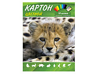 "Цветной картон ""Animal World"" 10 листов"