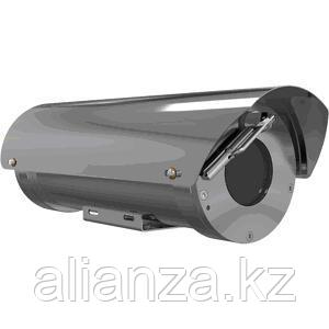 IP камера AXIS XF40-Q1765 -60C EAC
