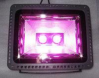 Фитосветильник светодиодный полного спектра для теплиц 100W