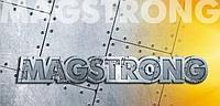 """Листовым прокатом """"MAGSTRONG"""" H450"""