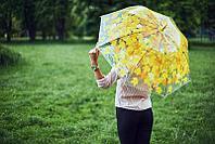"Зонт прозрачный ""Листопад"", желтый, фото 1"