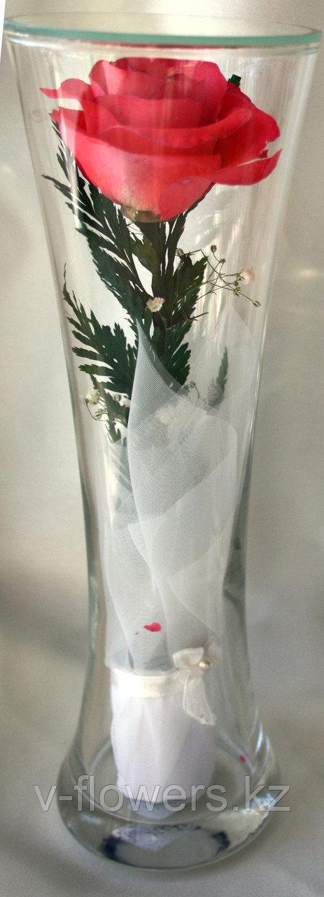 Живые розы 22 см в вакууме CuHRp