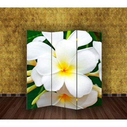 """Ширма """"Тропические цветы"""" 150х160см, фото 2"""