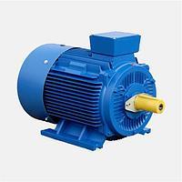 Электродвигатель 11 кВт 3000 об/мин АИР132М2 (5AИ)