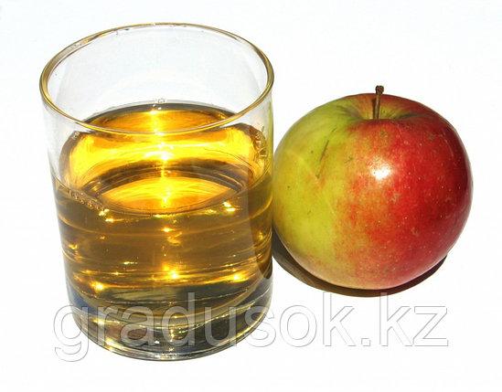 Сок концентрированный яблочный, фото 2