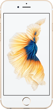 IPhone 6s 32Gb Gold, фото 2