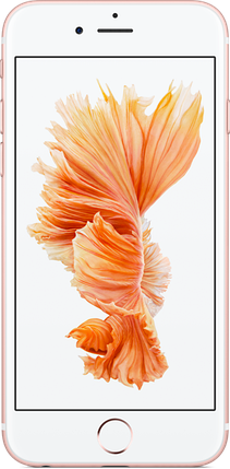 IPhone 6s 32Gb Rose Gold, фото 2