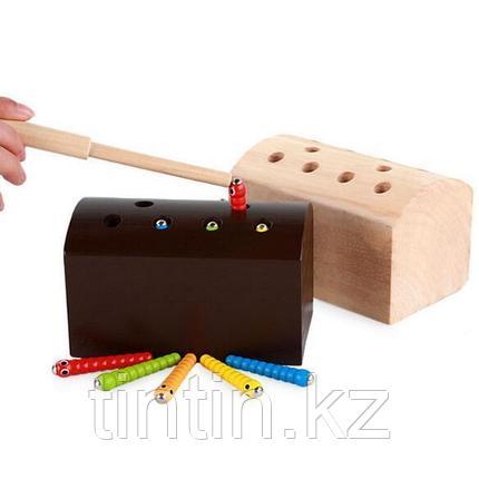 Деревянная игрушка - Сундук с червяками (на магнитах), DN-516, фото 2