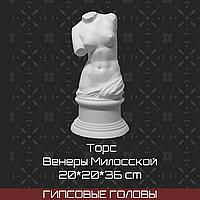 Торс Венеры Милосской (гипс  20*20*36 см)
