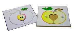 Строение яблока (пазлы) и его контур (ламинированный)