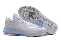 "Кроссовки Nike Zoom Kobe Venomenon VI (6) ""Grey White"" (40-46)"
